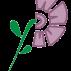 El carmen teresiano bogotá D.C violeta
