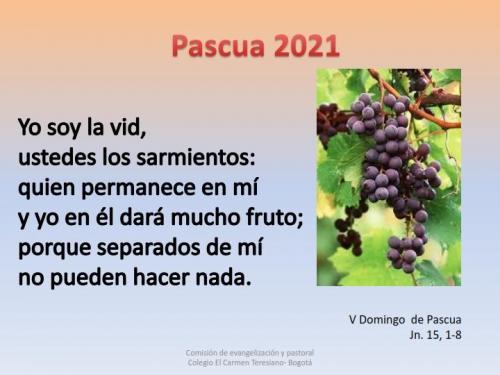 Pascua CEP 2021 005